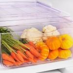 Geladeira Refrigerador Cycle Defrost Degelo Pratico 240L Branco RE31 220V